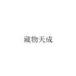 西藏云图文化创意产业有限责任公司