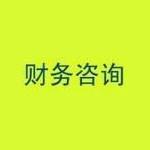 张家港市东林财务咨询有限公司