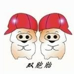 哈尔滨双胞胎饲料有限公司