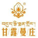 西藏南伊藏医药发展有限公司