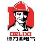 上海德力西集团有限公司