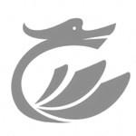安徽省飞龙新型材料有限公司